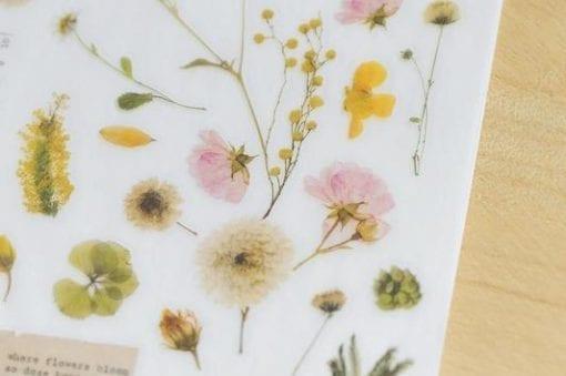Mu Print On Stickers Pressed Flowers transfer stickers