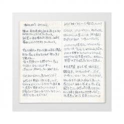 TRAVELER'S Notebook Refill 013 - Light Paper