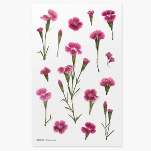 Appree Pressed Flower Stickers - China Pink