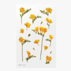Appree Pressed Flower Stickers - Freesia