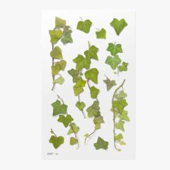 Appree Pressed Flower Stickers - Ivy