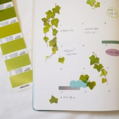 Appree Pressed Flower Stickers - Ivy