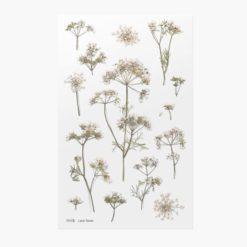 Appree Pressed Flower Stickers - Lace Flower