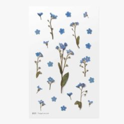 Appree Pressed Flower Stickers - Forget me not