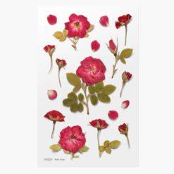 Appree Pressed Flower Stickers - Mini Rose