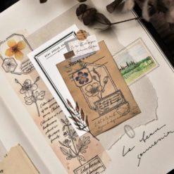Miao Stelle Botanical Sketch Washi Tape