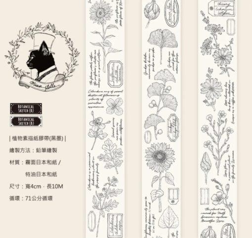 Miao Stelle Botanical Sketch - Black